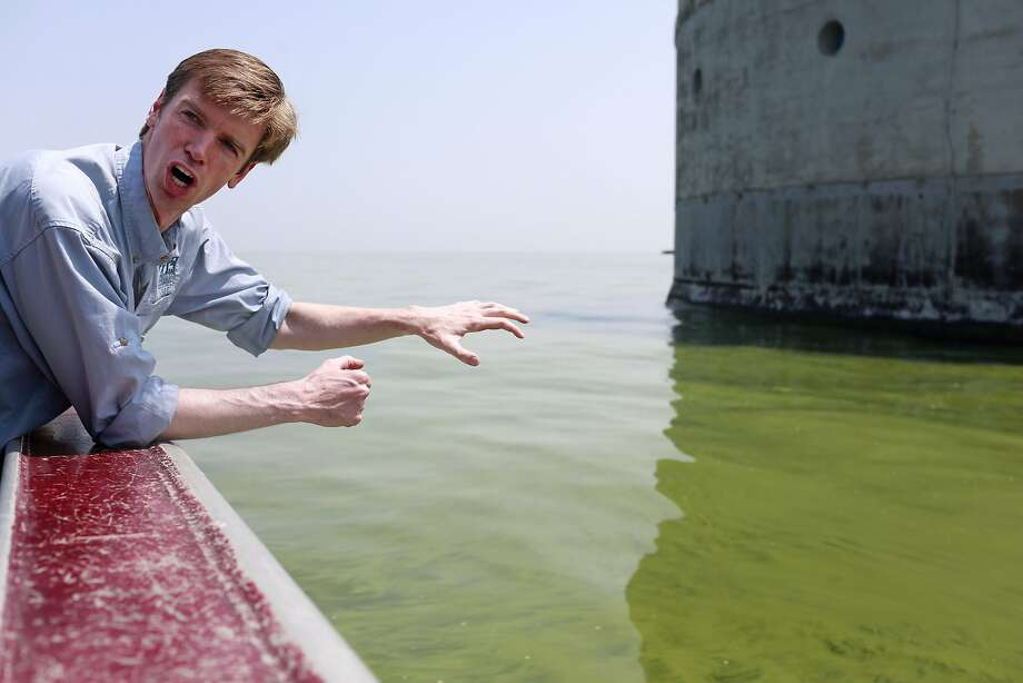 Collin O'Mara of the National Wildlife Federation discusses algae blooms, which may be the cause of drinking water contamination in Toledo, Ohio. Photo: Haraz N. Ghanbari, Associated Press