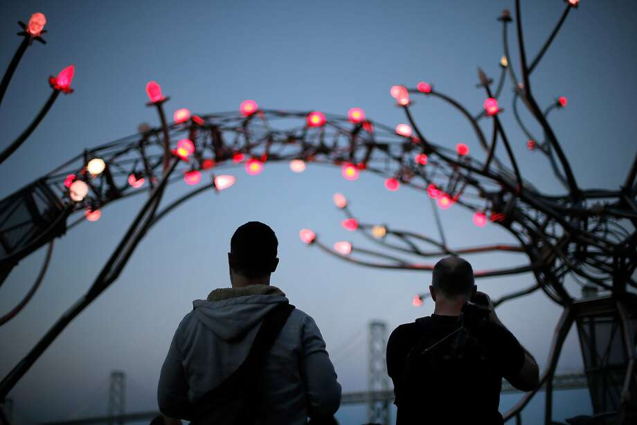 "Supporters of the Flaming Lotus Girls admire ""Soma"" at Pier 14 Plaza on the Embarcadero. Viewers can change the installation's color and climb a platform to touch the sculpture's brain. Photo: Carlos Avila Gonzalez, The Chronicle"