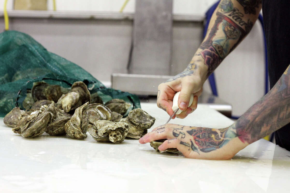 Blake Groomer shucks Texas Gulf Coast Oysters to prepare them for sale at Groomer's Seafood.