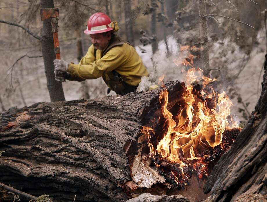 National park burns: Tracy Porter breaks up a burning tree damaged by the Eiler Fire in Lassen National Park near Hat 