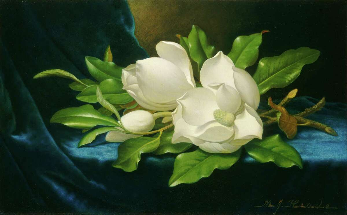 """An image of Martin Johnson Heade's """"Giant Magnolias on a Blue Velvet Cloth"""" appears on an I-45 billboard through Aug. 31 as part of the Art Everywhere U.S. program. (c. 1890, oil on canvas, National Gallery of Art, Washington DC, Gift of The Circle of the National Gallery of Art in Commemoration of its 10th Anniversary)"""