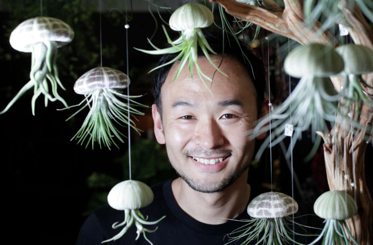 Hiro Hayama pictured with hanging Tillandsia (caput medusae) plants in sea urchin shells in the garden shop Utsuwa Floral Design he owns with his wife Misuzu.