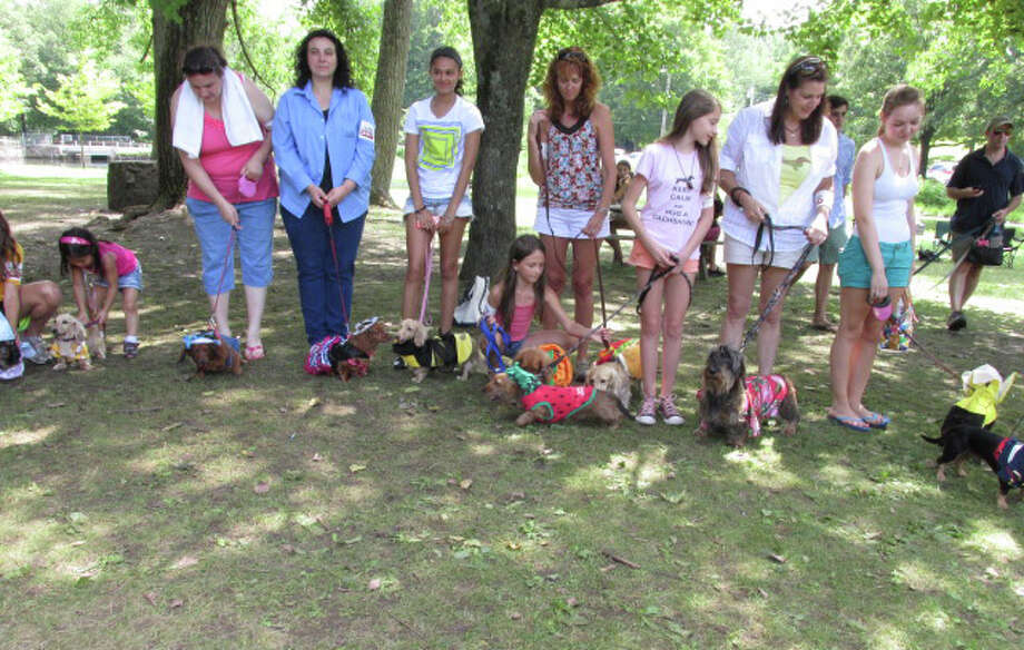 The Connecticut Yankee Dachshund Club invitational returns this year to Old Mine Park in Trumbull on Saturday from 11 a.m. to 3 p.m. Learn more about the breed, participate in programs and enjoy many games and contests. Find out more.  Photo: Contributed Photo / Stamford Advocate Contributed photo