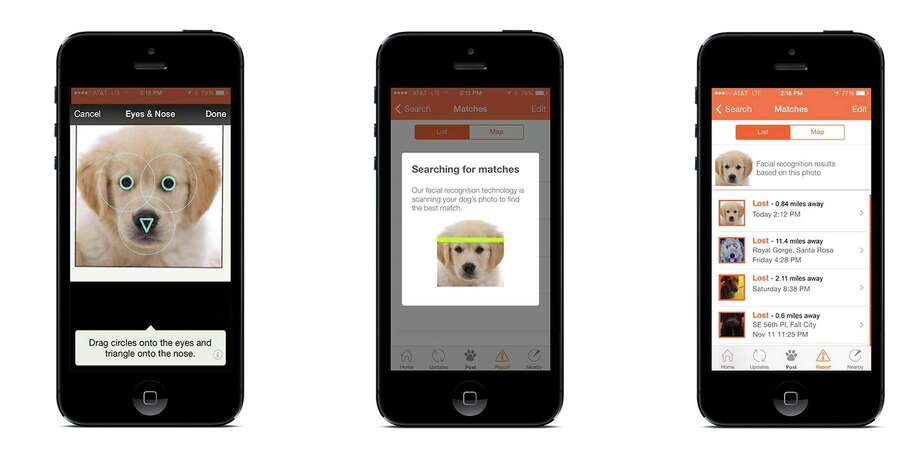 This undated illustration provided by FindingRover.com shows shows how a new smart phone application Finding Rover works. In May, San Diego County Animal Services became the first shelter system in the country to adapt the facial recognition plan. Every dog entering the county's three shelters will be put in the database. (AP Photo/FindingRover.com) Photo: HONS / FindingRover.com