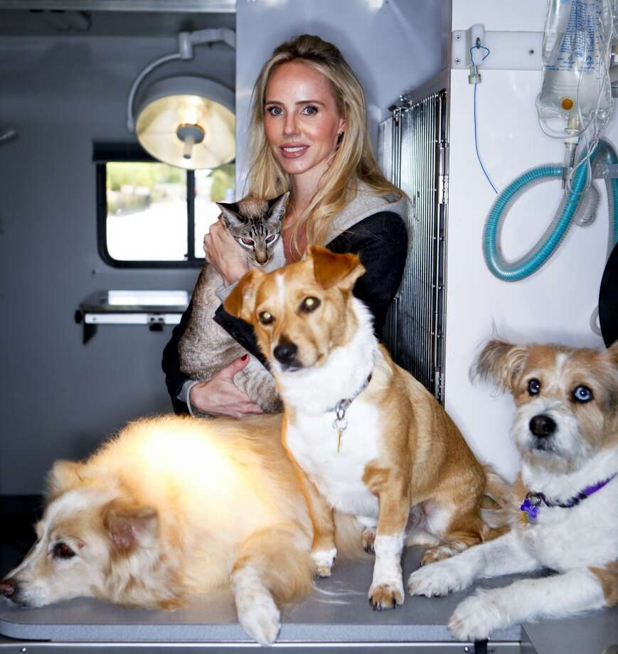 She made the list! Vanessa Getty, philanthropist and socialite, who works with the Peninsula Humane Society and helps fund this mobile spay and neuter van, is seen with one of her cats, Navin, her dog, Emily, and her mother's dogs, Henry and Rex, all of whom are rescue animals, on Wednesday, May 11, 2011 in San Francisco, Calif. Photo: Russell Yip, The Chronicle