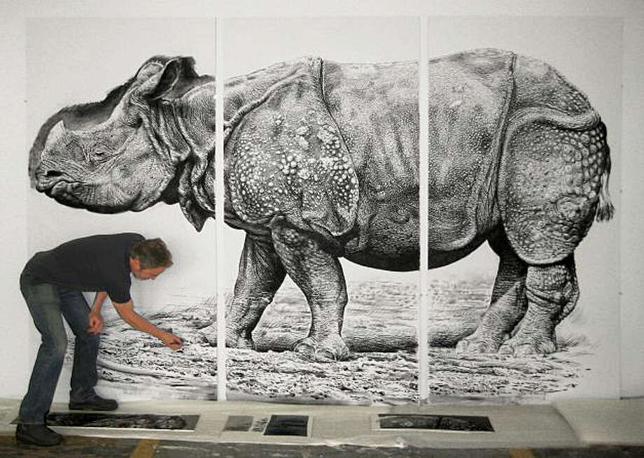 "The artwork of Rick Shaefer, who is known for his work focusing on nature including ""Rhino,"" 2012, will be on exhibit at Fairfield Universityís Bellarmine Museum of Art beginning Sept. 1. Photo: Contributed Photo / Fairfield Citizen"
