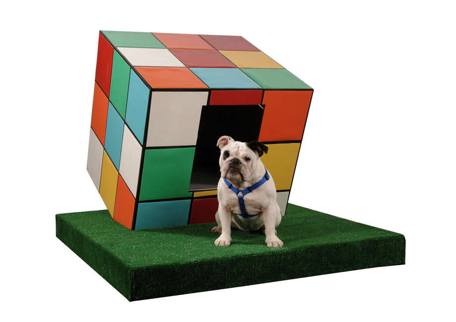 Tater, an English Bulldog, chills on the  lawn  of a house designed by Page Sutherland Page Architects for the 2009 Barkitecture Houston event. Photo: Barkitecture Houston / handout