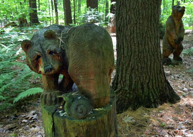 Chain saw carved bears by Bryan Ruth in Bear Park at Tony and Judy Eastwood's woodland garden Wednesday July 2, 2014, in the backyard of their home in Saratoga Springs, NY.  (John Carl D'Annibale / Times Union) Photo: John Carl D'Annibale / 00027577A