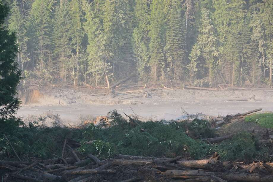 Debris from the Mount Polley Tailings Pond has traveled down the Hazeltine Creek and stopped where the creek meets Quesnel Lake. Photo: Cariboo Regional District