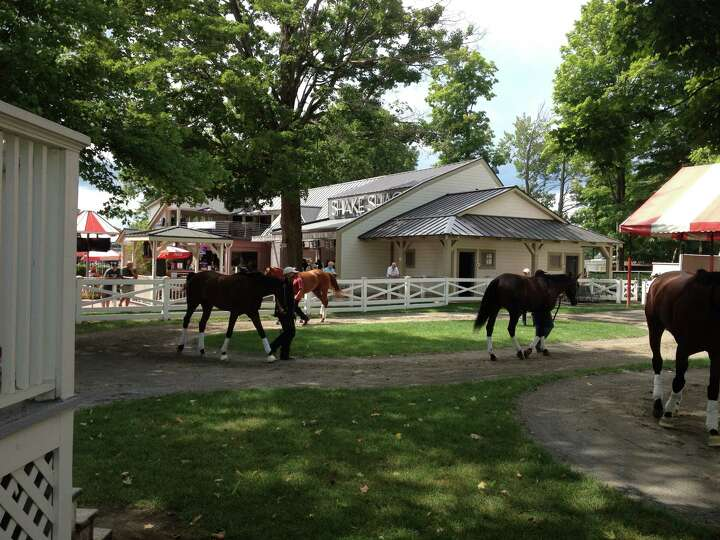 School was in session in the paddock at Saratoga Race Course late Thursday morning. Most days you ca
