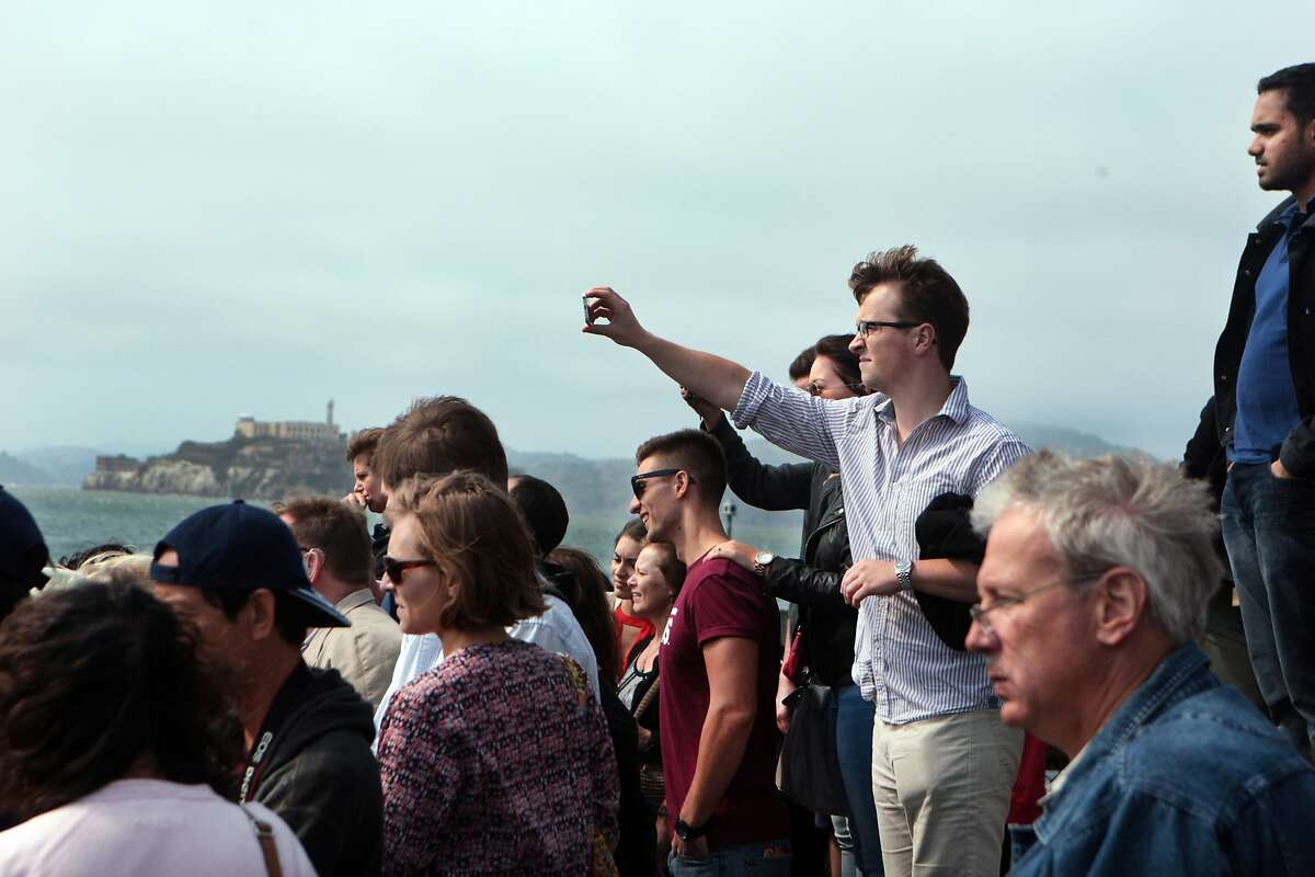 Tourists snap photos and gaze at the famous sea lions of Pier 39 on Thursday, August 7, 2014 in San Francisco, Calif. Many sea lions have returned to the Pier 39 docks after mysteriously vanishing earlier this year.