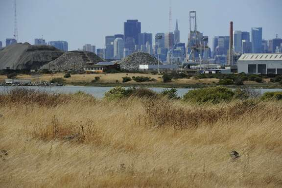 Downtown can be seen from the grounds of India Basin Open Space on August 04, 2014 in San Francisco.