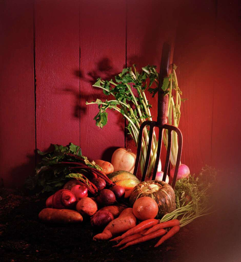 planting a fall vegetable garden is a topic houston chronicle