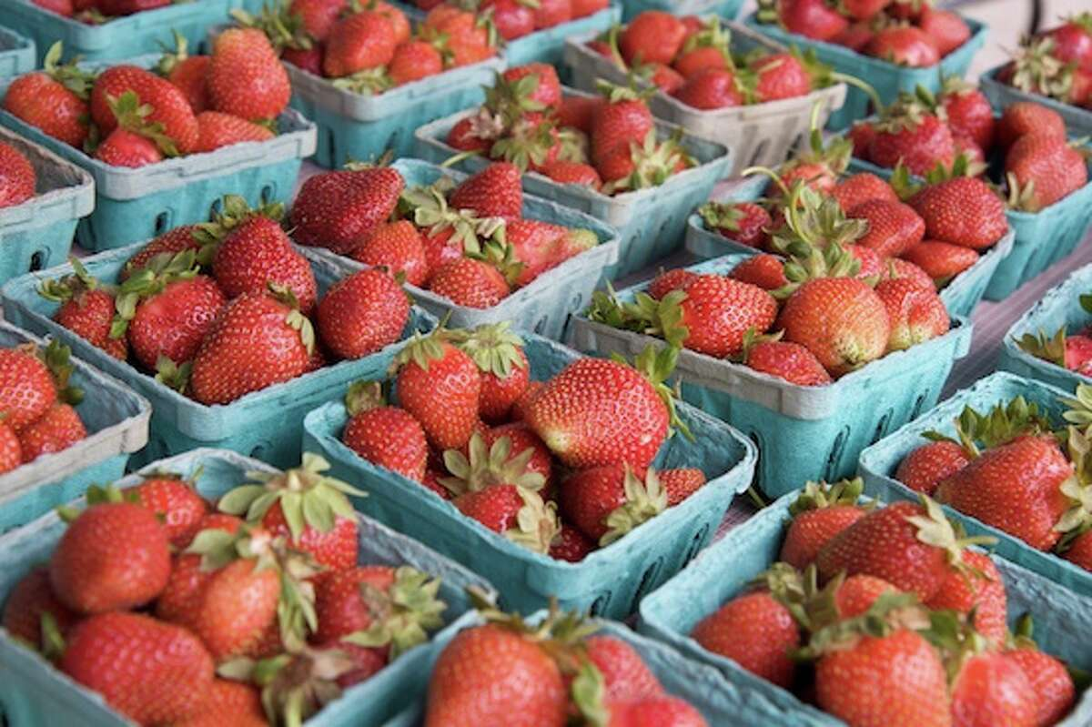 Check out the Rowayton Farmers Market on Fridays in Pinkney Park.