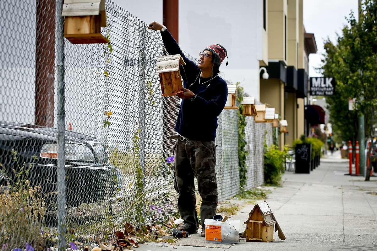 Artist Michael Parayno replaces a stolen birdhouse that he installed on a fence along Martin Luther King, Jr. Blvd. on Monday, June 3, 2014 in Oakland, Calif.