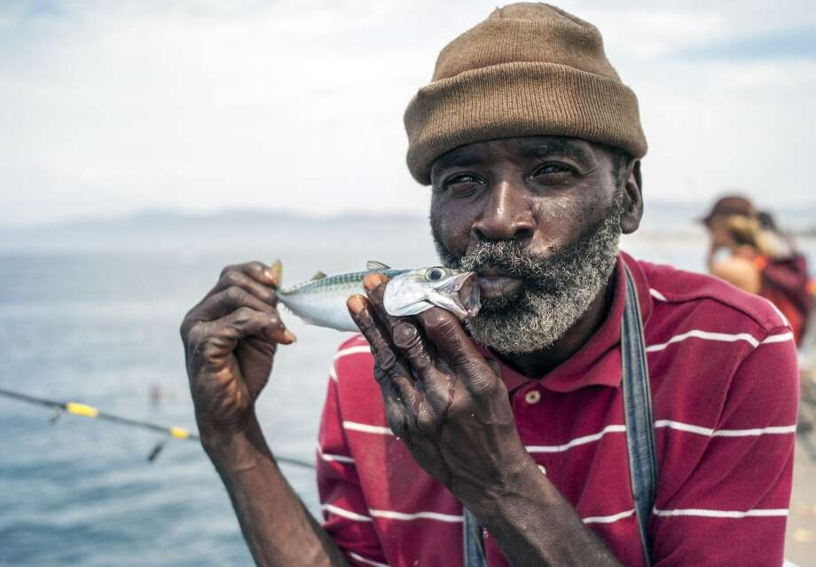 California: Local fisherman Vernon Williams, 56, kisses a mackerel at the Venice Beach pier. Photo: Damian Dovarganes, Associated Press