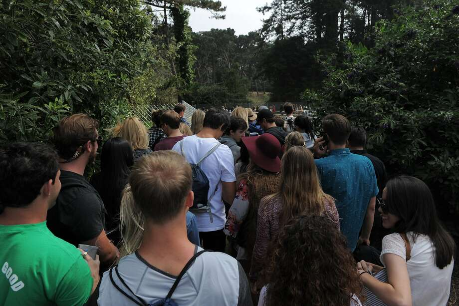 In one of many lines entering Outside Lands Music Festival in Golden Gate Park on August 08, 2014 in San Francisco, CA. Photo: Craig Hudson, The Chronicle