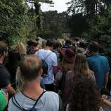 In one of many lines entering Outside Lands Music Festival in Golden Gate Park on August 08, 2014 in San Francisco, CA.