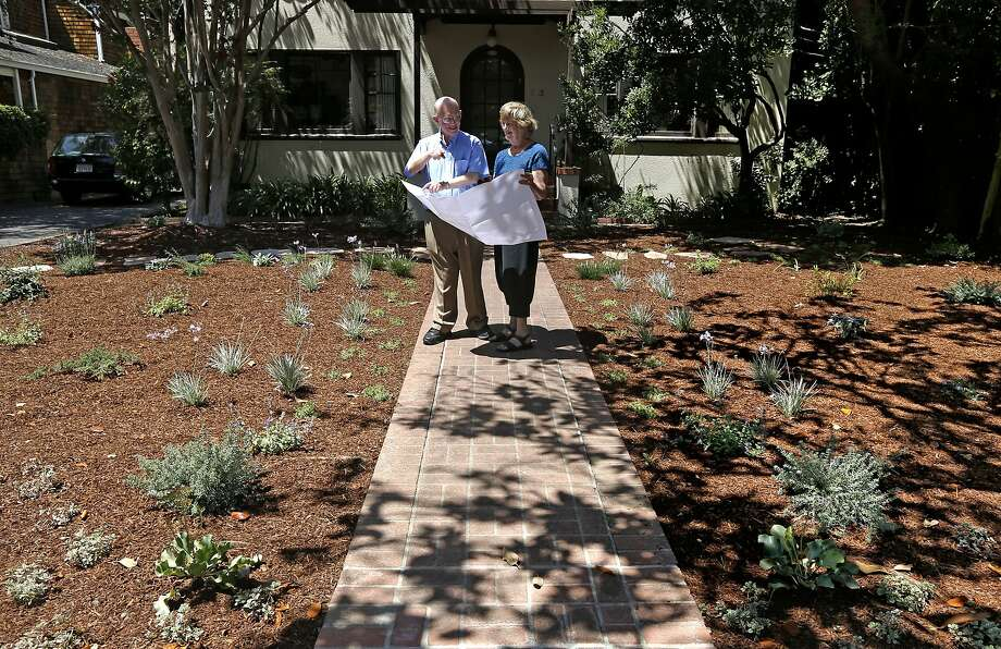 Alan and Fran Bennett took out their lawn and had drought-tolerant bushes, plants and trees put in at their home in Palo Alto. Photo: Michael Macor, The Chronicle