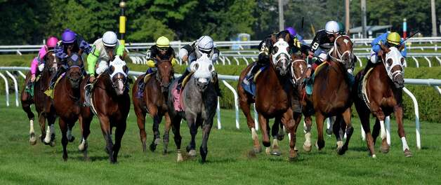 The entire field of the 8th race is spread across the track as #8 Kwacha, center with jockey Javier Castellano made it to the wire first Aug. 10, 2014 at the Saratoga Race Course in Saratoga Springs, N.Y.     (Skip Dickstein/Times Union) Photo: SKIP DICKSTEIN