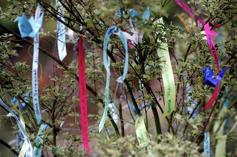 "Handwritten notes dangle from a tree on the third and final day of the 14th annual Summer Meltdown, the ""Biggest Little Festival in The Northwest,"" on Sunday, August 10, 2014, at the Whitehorse Mountain Amphitheater in Darrington, Wash. Photo: JORDAN STEAD, SEATTLEPI.COM / SEATTLEPI.COM"