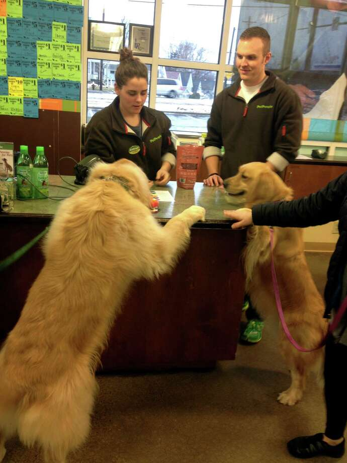 Golden retrievers Cooper and Charlotte devour treats at PetPeople's Rocky River store in Ohio. Rosser Capital Partners, a Greenwich-based private equity firm, has made a significant investment in the Hilliard, Ohio-based pet supply company and is now partnering in its operation. Photo: Contributed Photo / Greenwich Time Contributed
