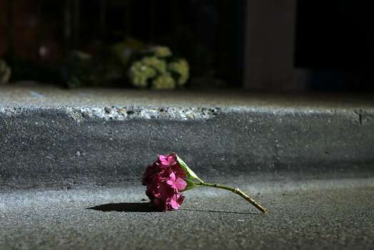 A flower lays in the street in front of Robin Williams' home in Tiburon, Calif. on Monday, August 11, 2014. Photo: Scott Strazzante, The Chronicle