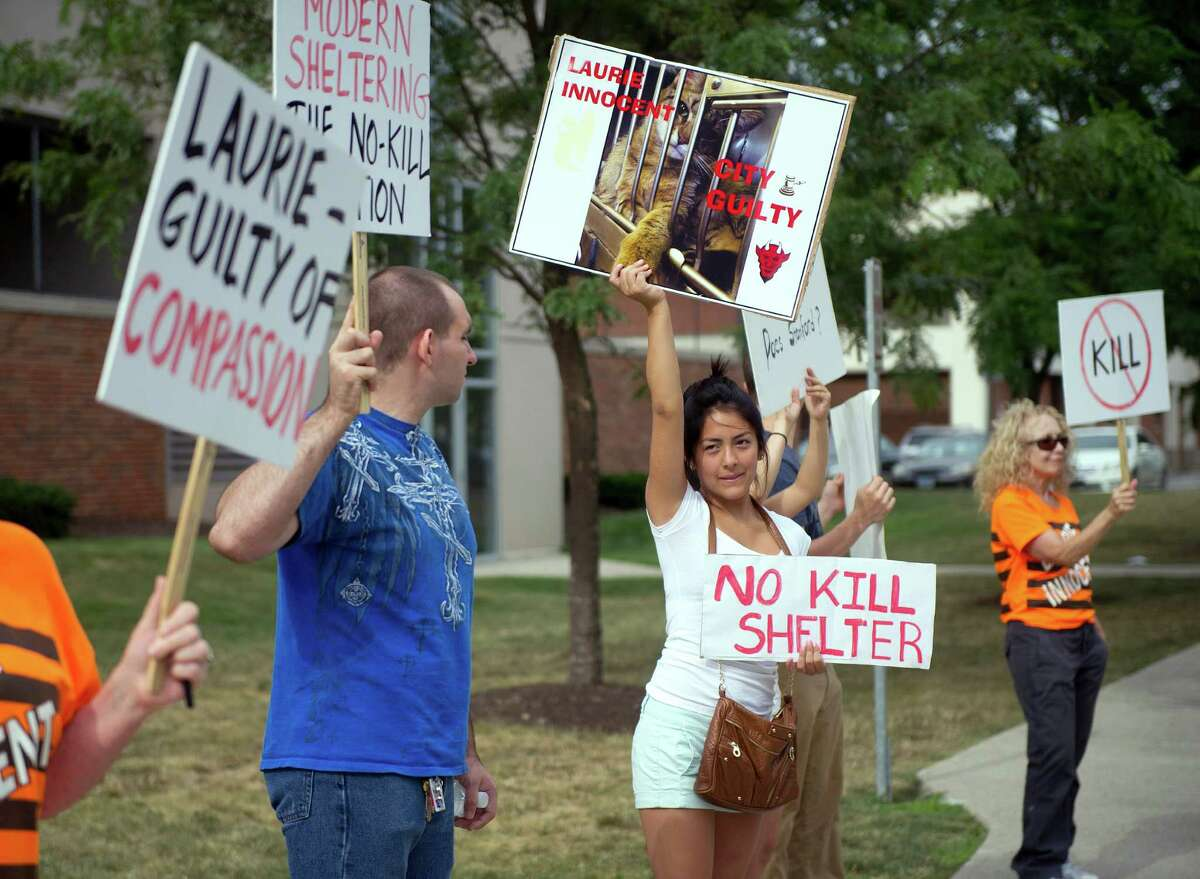 Supporters of former Stamford animal control manager Laurie Hollywood, who is charged with three counts of reckless endangerment, protest outside State Superior Court on Tuesday, August 12, 2014, where Hollywood's case was continued until September 16.