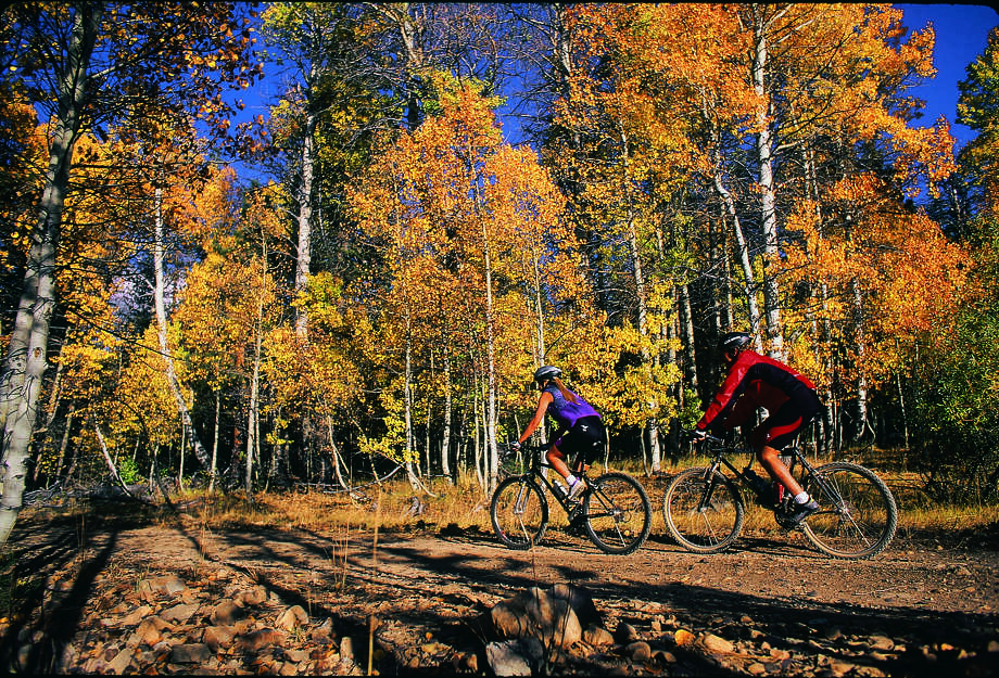 Mountain bikers in Nevada. Photo: Travel Nevada