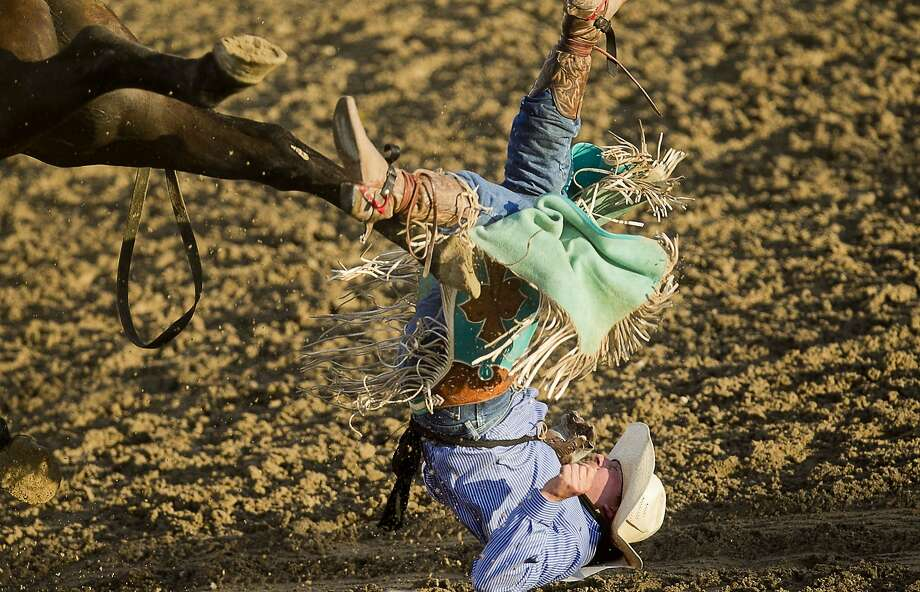 Joel Schlegel, from Burns, Colo., falls after being bucked from horse Cocktail Slipper during the Bareback Bronc Riding division of the Caldwell Night Rodeo in Caldwell, Idaho on Tuesday, Aug. 12, 2014. (AP Photo/The Idaho Statesman, Kyle Green) Photo: Kyle Green, Associated Press