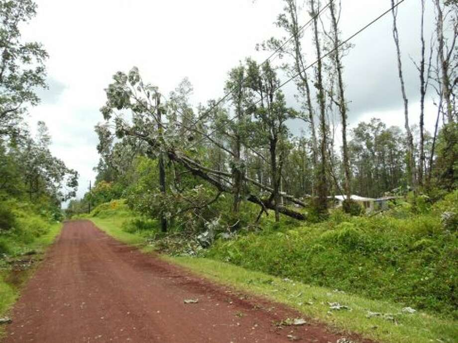 Many residents in Puna live off unpaved roads -- and many were living off the grid even before Tropical Storm Iselle hit. Photo: HELCO