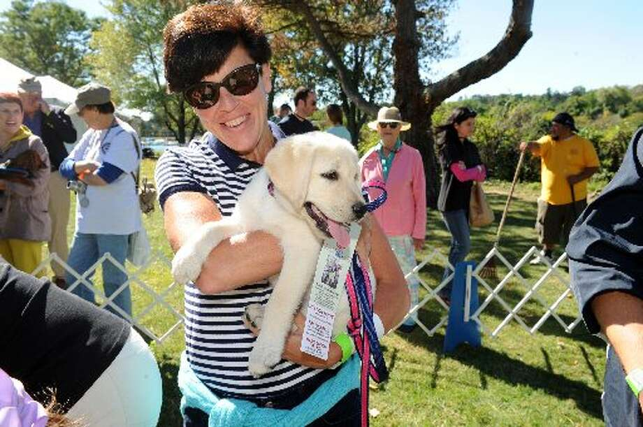 Kate McNamara, of Greenwich, holds Soleil, a Labrador retriever 11-weeks-old, during the Puppy Love competition at last year's Adopt-A-Dog Puttin' on the Dog festival at Roger Sherman Baldwin Park, in Greenwich. Photo by Helen Neafsey.