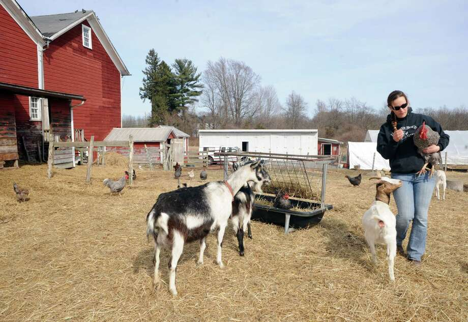 Lauren Coon on the families Marshmeadow Farm Thursday April 3, 2014 in Germantown, N.Y.  (Michael P. Farrell/Times Union) Photo: Michael P. Farrell / 00026037A