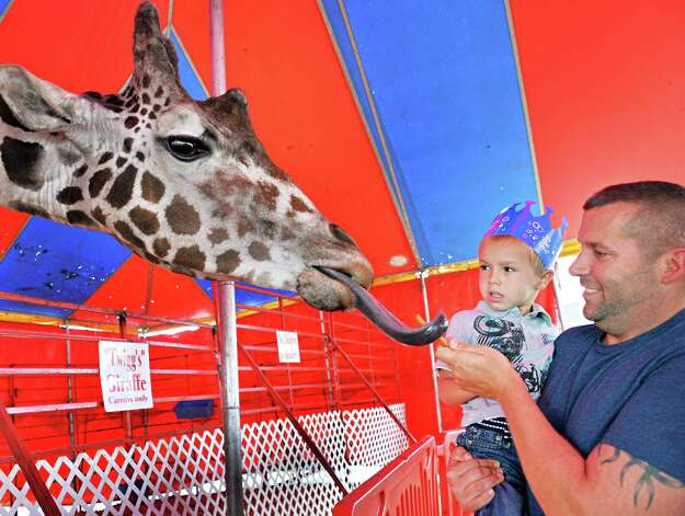 George Albert of Rotterdam holds up his cousin 4-year-old Nikai Richards of Colonie to feed Twiggs the giraffe in the Circus Hollywood animal menagerie at the Altamont Fair Thursday August 14, 2014, in Altamont, NY.  (John Carl D'Annibale / Times Union) Photo: John Carl D'Annibale / 00028138A