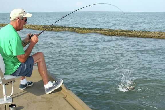 Before making a cast on Labor Day, most of Texas' estimated 1.5 million recreational anglers will need to purchase a 2014-15 fishing license. The Monday holiday falls on Sept. 1, the start of the new license year for Texas fishing and hunting licenses.