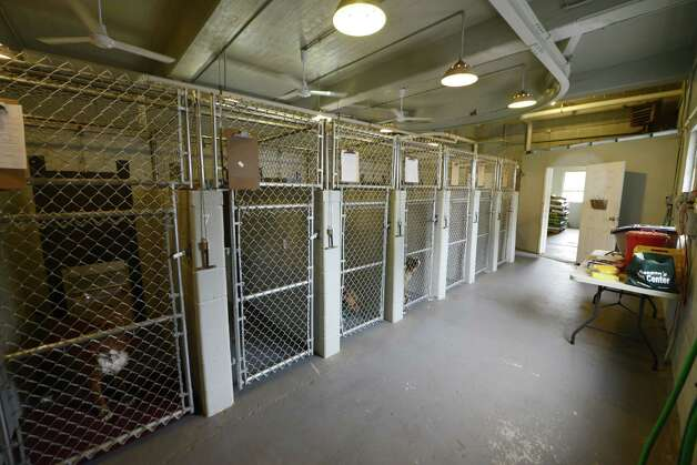 View showing the Inside of Schenectady's animal shelter Tuesday, Aug. 12, 2014, located at the city sewage treatment plant on Technology Dr. in Schenectady, N.Y. (Will Waldron/Times Union) Photo: WW / 00028143A