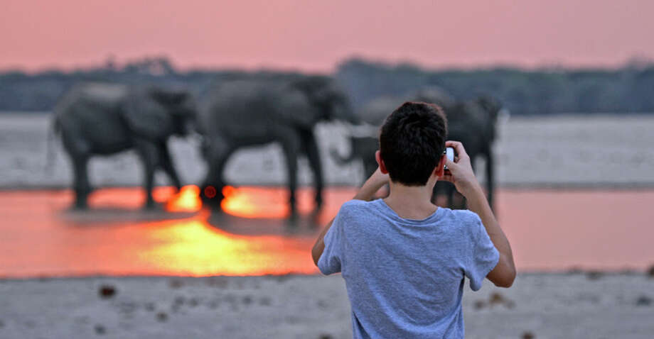 Viewing elephants and tending to the water holes that attract them to Hwange National Park are part of African Safari Company's new Wild Zimbabwe safari for 2015. Photo: African Safari Company / ONLINE_YES