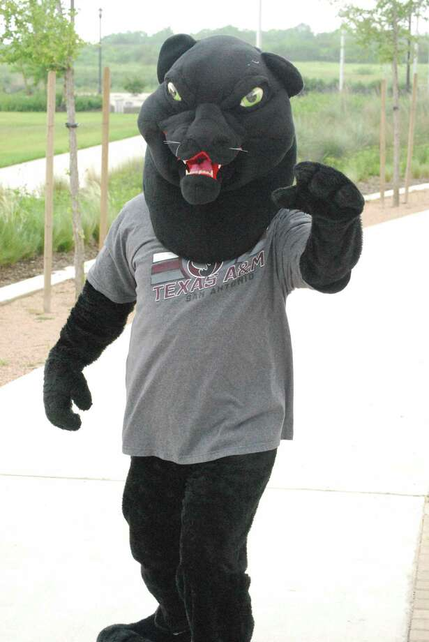 A&M-SA's mascot gained a moniker — General the Jaguar — at the President's Picnic on Wednesday, August 27 on the lawn at the Main Campus. Photo: Courtesy