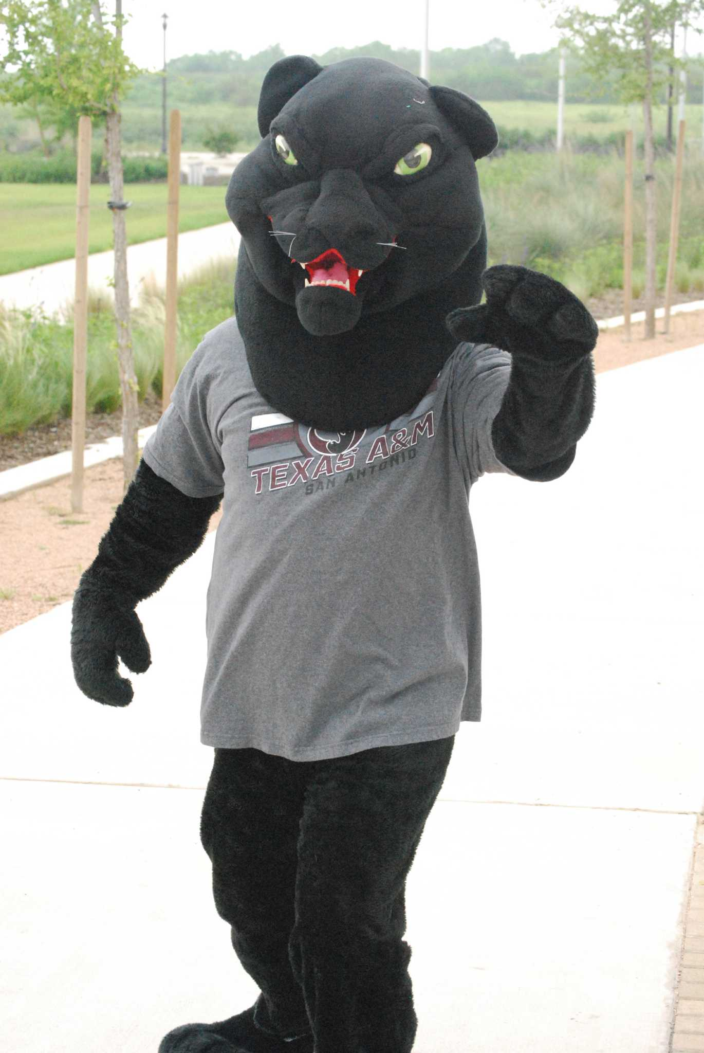 Jaguar San Antonio >> A M Sa S Mascot Gets A Name San Antonio Express News