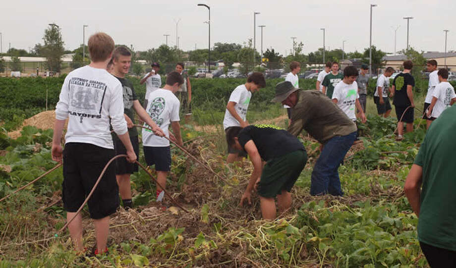 Some of the approximately 30 freshmen football players from Reagan High School clean out the garden at the San Antonio Food Bank earlier this summer. That initiative was part of the community service activities that Reagan's football players completed this summer. Photo: Courtesy / North East ISD