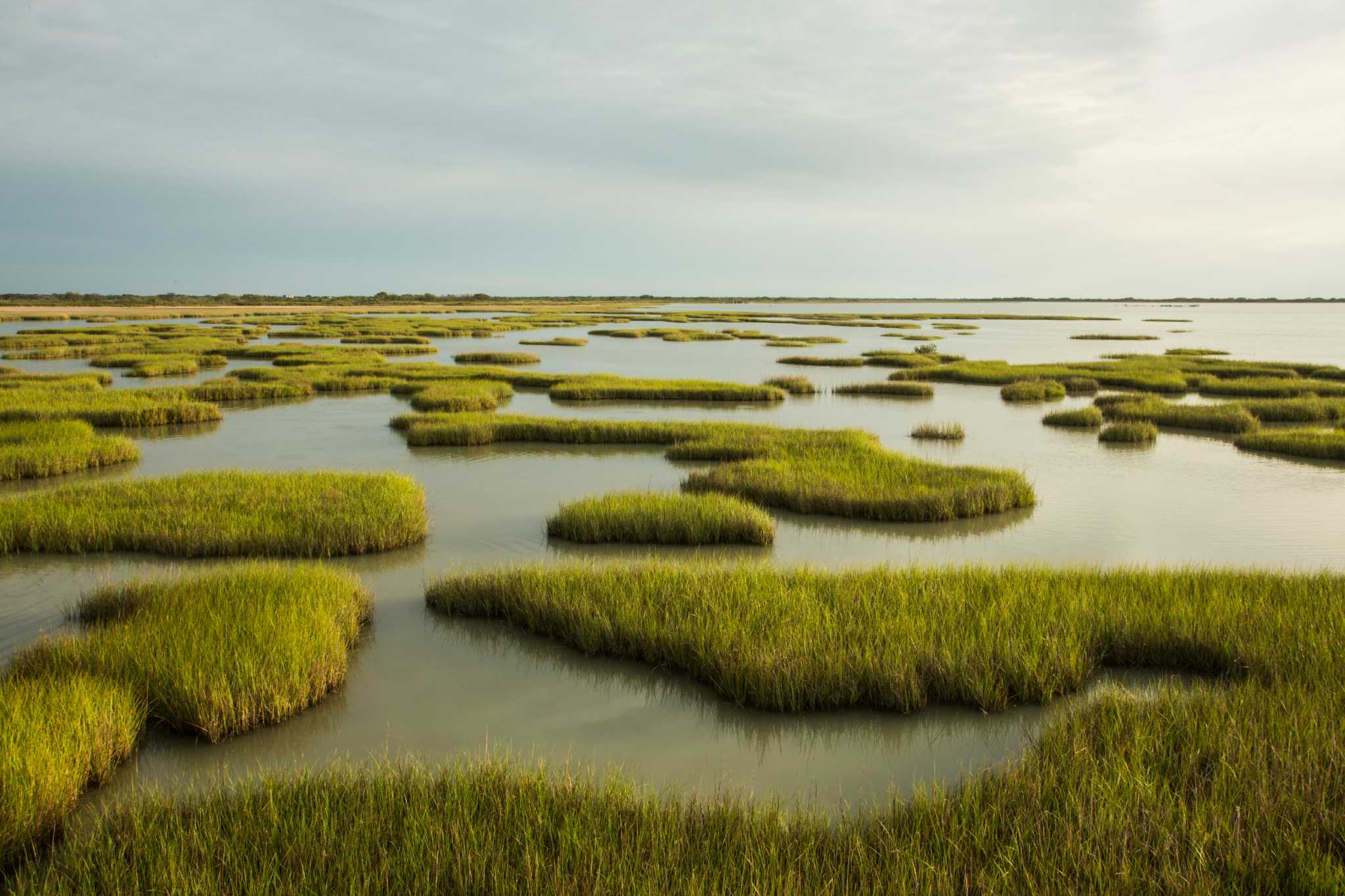 Pristine Piece Of Texas Coast Becoming A State Park