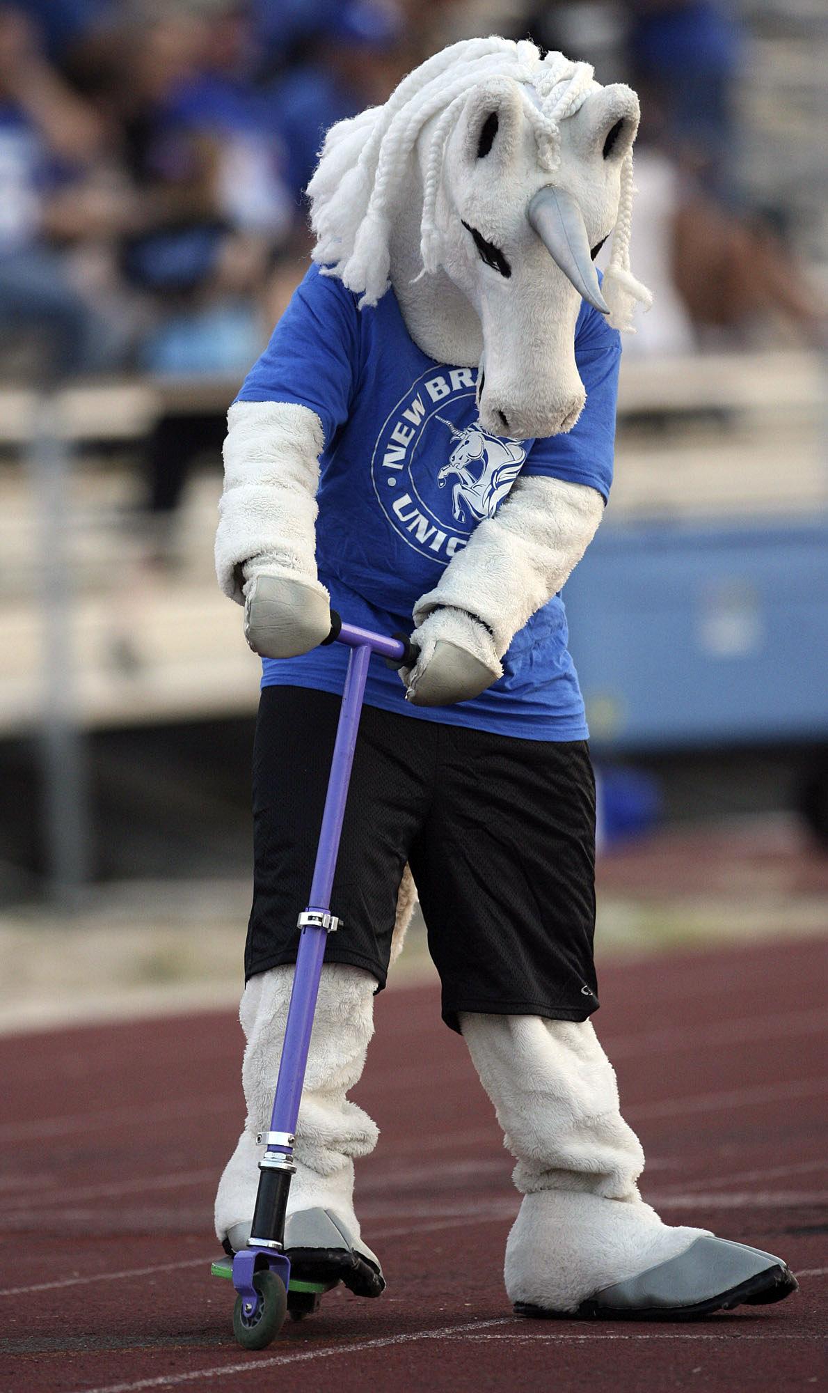 Funny High School Mascots Around Texas San Antonio Express News