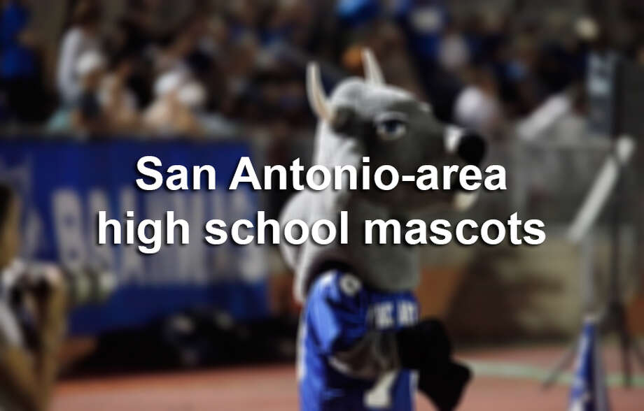 Here are just a few of the costumed characters that represent high schools in San Antonio and the surrounding area. Photo: Kin Man Hui, San Antonio Express-News / San Antonio Express-News