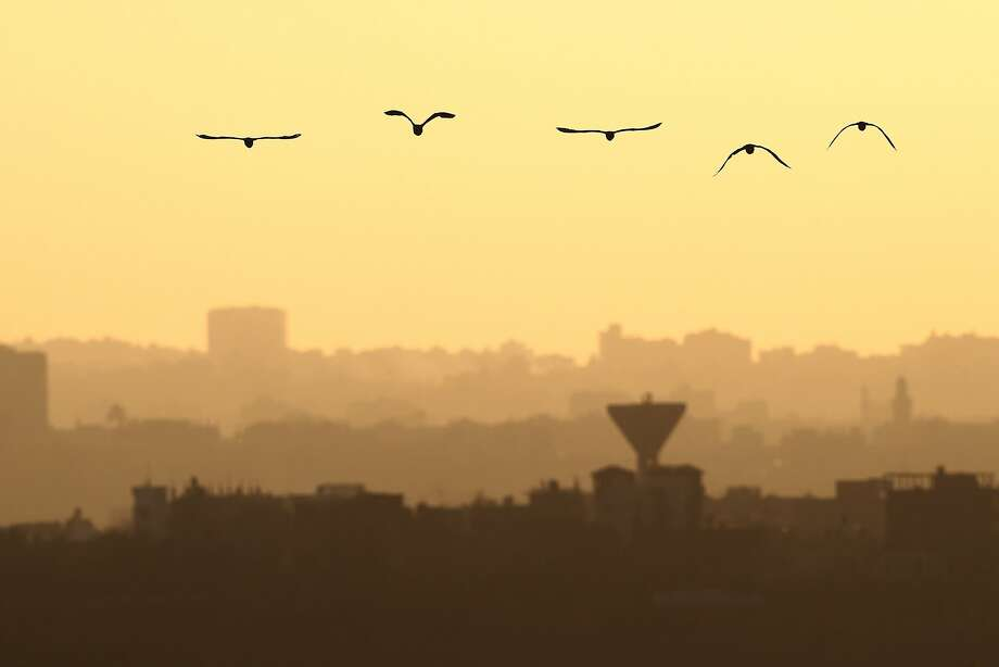 TOPSHOTS Birds fly in front of the Gaza Strip as seen from the Israeli side of the  Israel Gaza Border on August 19,2014. Israel and Palestinian militants resumed fire across the Gaza border on Tuesday, sparking panic across the war-torn enclave and halting truce talks. AFP PHOTO/DAVID BUIMOVITCHDAVID BUIMOVITCH/AFP/Getty Images Photo: David Buimovitch, AFP/Getty Images