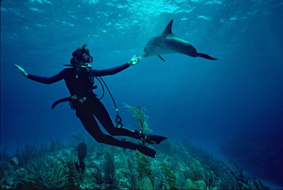 """Mission Blue"" tracks Sylvia Earle as she pursues her longtime dedication to exploring and aiding the seas. Photo: Bryce Groark, Associated Press"