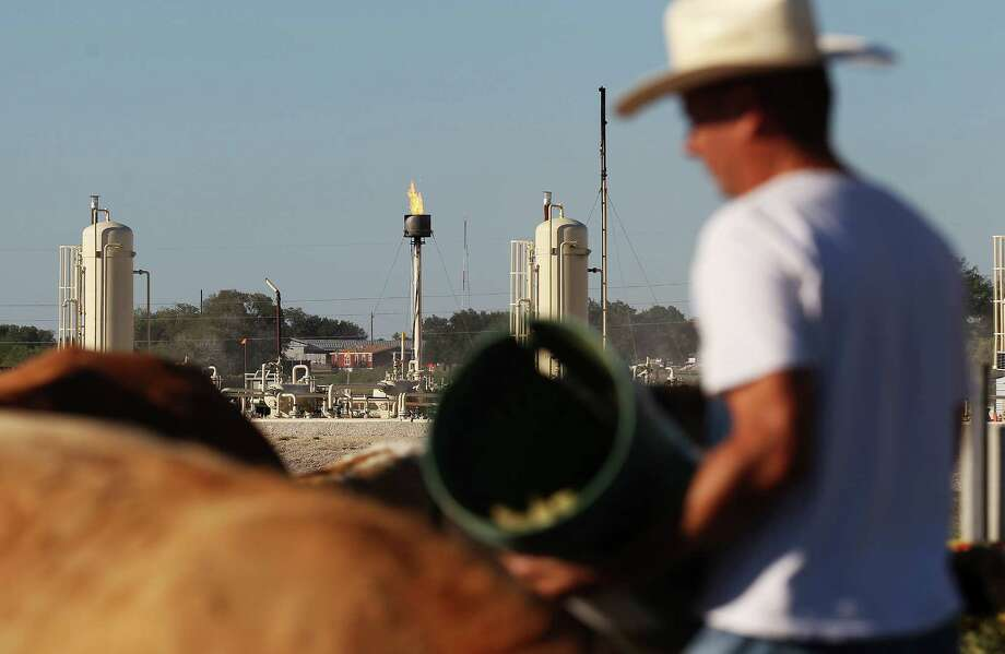 """Robert Jonas tends to his cattle within sight of a flaring stack. A former Karnes City police chief, Jonas owns the mineral rights on his ranch, but even his royalty checks - known as """"mailbox money"""" - don't keep him from regretting the waste of gas. Photo: Kin Man Hui, Staff / ©2014 San Antonio Express-News"""
