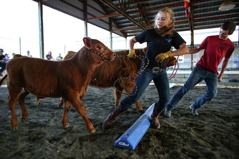 "Gen McKenzie, 16, of Snohomish, and Zach. Wilson, 15, of Stanwood compete in the ""Cow Olympics"" during the first weekend of the Evergreen State Fair in Monroe. The annual fair continues through September 1. Photographed on Saturday, August 23, 2014. Photo: JOSHUA TRUJILLO, SEATTLEPI.COM / SEATTLEPI.COM"