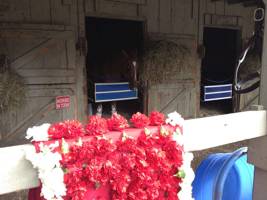 The Travers blanket of red and white carnations hangs over a post at trainer Jimmy Jerkens' barn at the Oklahoma Training Track Sunday morning. They were there because Jerkens' V.E. Day won the Midsummer Derby by a nose over stablemate Wicked Strong on Saturday. The horse in the background keeping watch over the flowers is non other than V.E. Day himself. Wonder if he was thinking those flowers would be a nice morning treat the day after he won the big race for the barn. ( Tim Wilkin / Times Union )