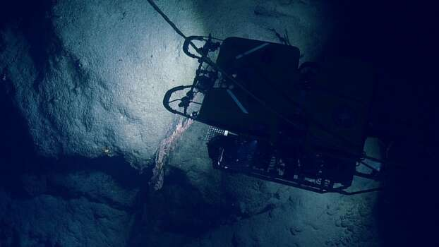 Remote Operated Vehicle Hercules floats over a rocky outcrop. Photo: Ocean Exploration Trust