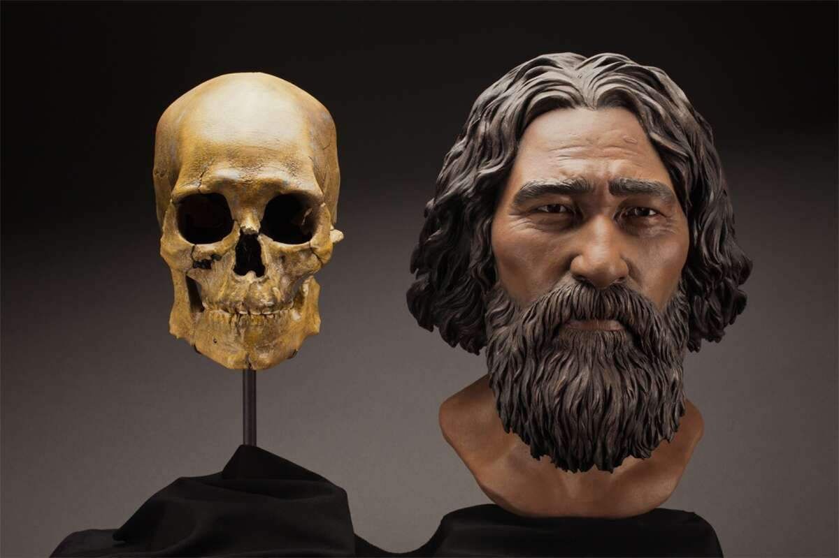 """This clay facial reconstruction of Kennewick Man or """"the Ancient One"""" was carefully sculpted around the morphological features of his skull, and lends a deeper understanding of what he may have looked like nearly 9,000 years ago. The remains will be repatriated to Columbia Basin tribes for traditional burial under legislation passed by Congress."""